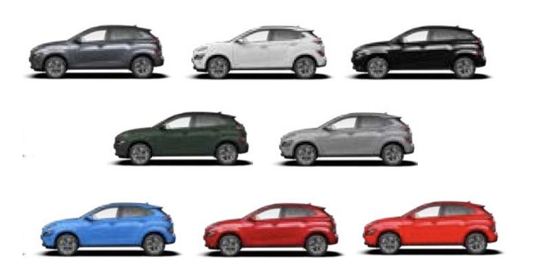 קונה EV צבעים
